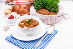 True North German mock turtle soup with mushrooms Stock Images