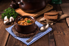 True North German mock turtle soup with mushrooms Stock Photos