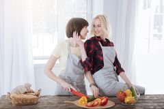 Happy cheerful women cooking. True partnership. Happy positive cheerful women smiling and cooking together while dividing their responsibilities in the kitchen Stock Photography