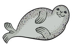 True seal or earless spotted seal Stock Photography