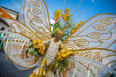 A true Trinidadian butterfly. A young woman dressed as a gold and white butterfly among balisier flowers smiles with her golden bell bottom frilly pants as she Royalty Free Stock Photography