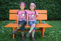 True twins Stock Image