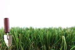 truelle d'herbe de bord Photo stock