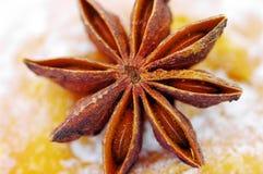 Truestar spices Stock Image