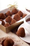 Trufa de chocolate Fotos de archivo libres de regalías