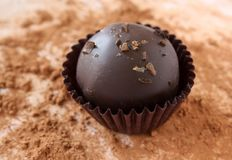 Trufa de chocolate Imagens de Stock Royalty Free
