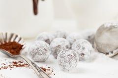 Trufa de chocolate com pó do açúcar Imagens de Stock Royalty Free