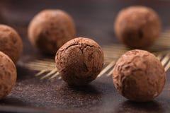 Trufas de chocolate com pó de cacau no fundo de madeira Imagens de Stock Royalty Free