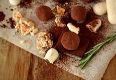 Trufas de chocolate polvilhadas com o pó de cacau foto de stock royalty free