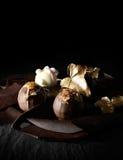 Trufas luxuosas II Imagem de Stock Royalty Free
