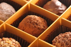 Truffe chocolate Stock Images