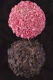 Truffe de chocolat avec la praline Photographie stock libre de droits
