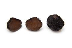 Truffe noire d'été Photos stock