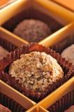 Truffe Praline Bresilienne Chocolate Stock Photography