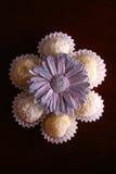Truffels avec la fleur photo stock
