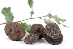 Truffes Photo stock