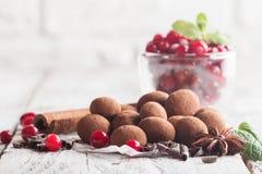 Truffes de chocolat avec la canneberge Photo libre de droits
