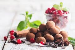 Truffes de chocolat avec la canneberge Photographie stock
