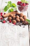 Truffes de chocolat avec la canneberge Photos libres de droits