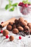 Truffes de chocolat avec la canneberge Photos stock
