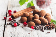 Truffes de chocolat avec la canneberge Images stock