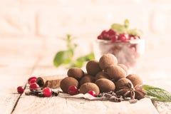 Truffes de chocolat avec la canneberge Image stock