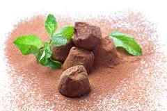 Truffes de chocolat avec la menthe fraîche Photographie stock libre de droits