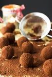 Truffes de chocolat avec la poudre de cacao Photographie stock libre de droits