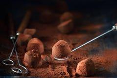 Truffes de chocolat Bonbons au chocolat faits maison à truffe avec la poudre de cacao photographie stock libre de droits