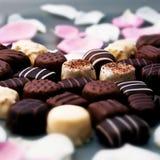 Truffes de chocolat et pétales roses Images stock