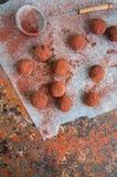 Truffes de chocolat foncées couvertes de poudre de cacao Photo stock