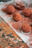 Truffes de chocolat foncées couvertes de poudre de cacao Photographie stock libre de droits