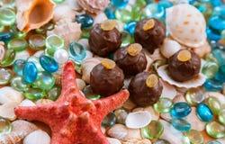 Truffes de chocolat sur les roches et le fond en verre de coquillages photo libre de droits