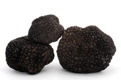 Truffle Stock Photography