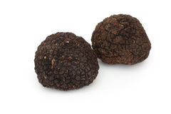 Truffle Royalty Free Stock Photo