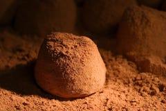 Truffle. Close-up of a chocolate truffle Stock Photos