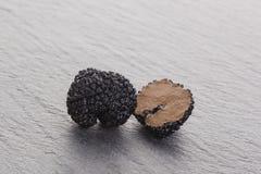 truffle Imagem de Stock