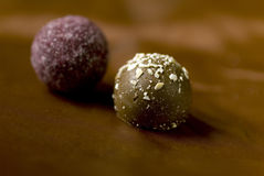Truffle Royalty Free Stock Images