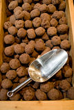 Truffle with chocolate Stock Photography