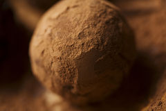 Truffle closeup Stock Photography