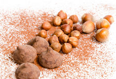 Truffle and hazelnuts Stock Photos