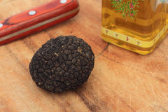 Truffle in kitchen Stock Image