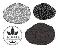Truffle Stock Images
