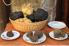 truffles fotografia de stock