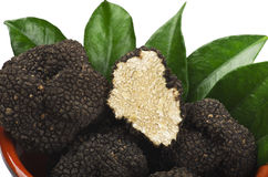 Truffles Royalty Free Stock Photo