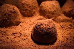 Truffles. Chocolate background Royalty Free Stock Photo