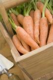 trug морковей деревянное Стоковое Изображение RF