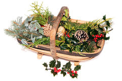Trug with cut greenery for decorations Royalty Free Stock Photos