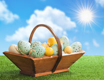 Trug Of Easter Eggs Stock Image