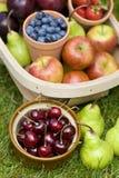 Trug lato owoc Obrazy Royalty Free